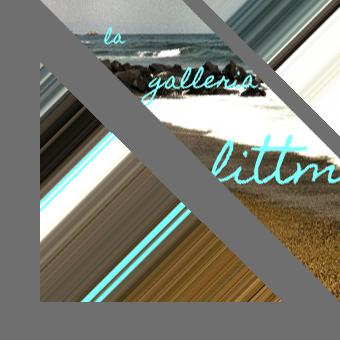 la galleria littmann